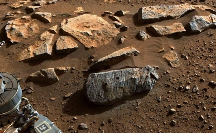 NASA's Mars Rover Collects Rocks That Boost The Case For Ancient Life
